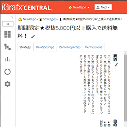 iGrafx Japanese Text Support